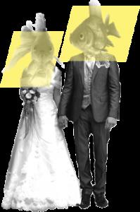 gravez vos souvenirs de mariage grâce au film